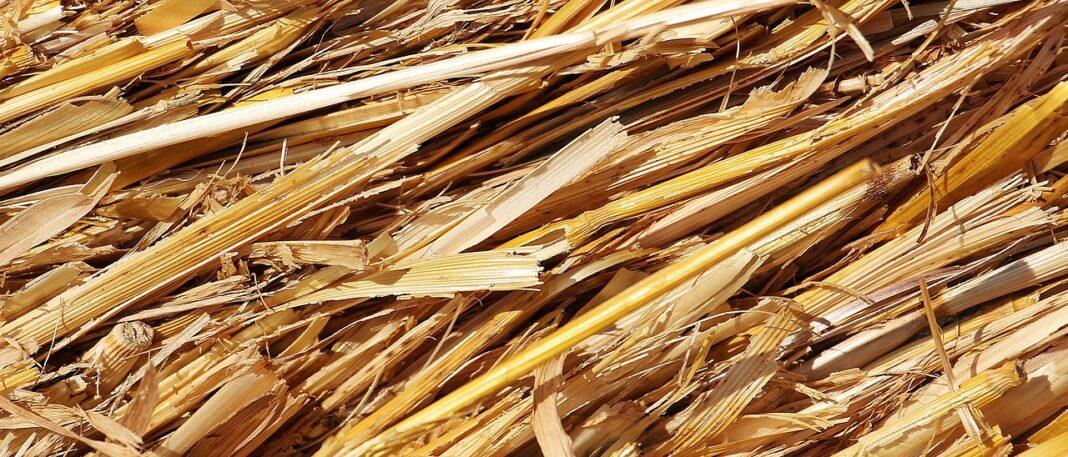 Biomasa, słoma